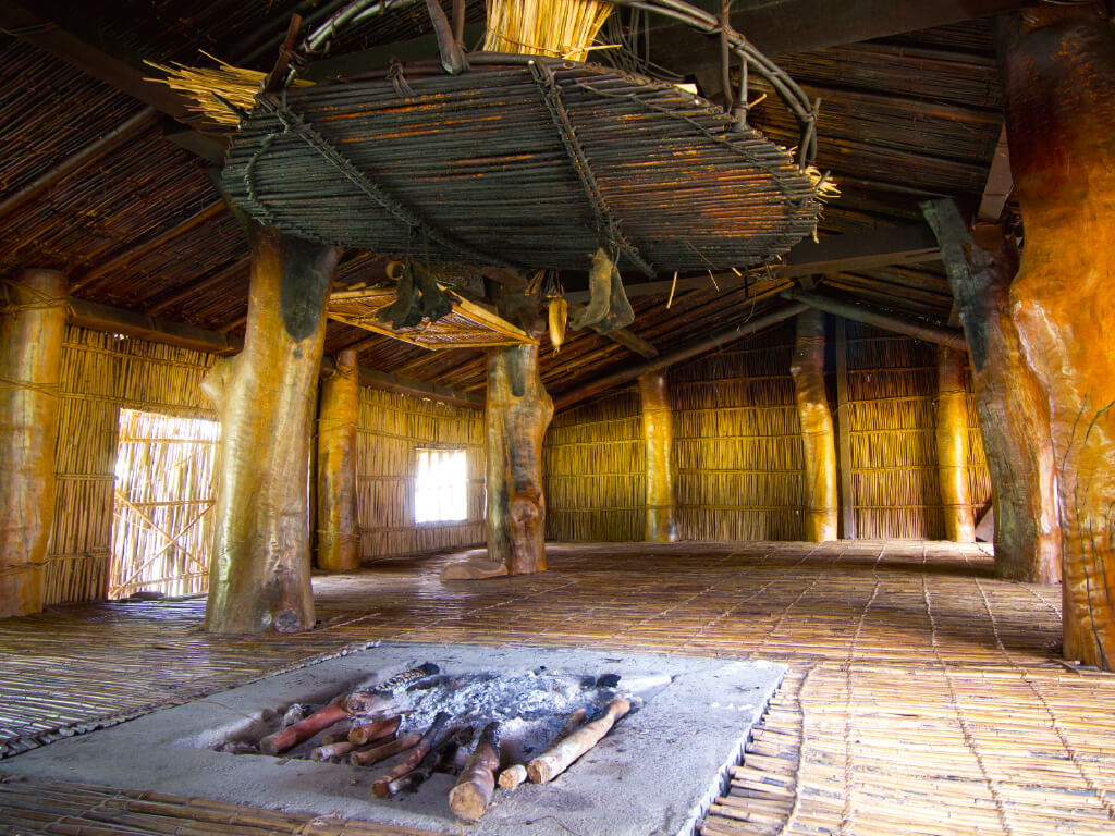Return to Nature - Traditional Kiwit House