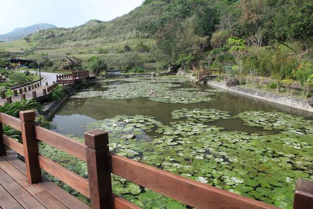 Lotus Pond Trail in Hualien Visitor Center