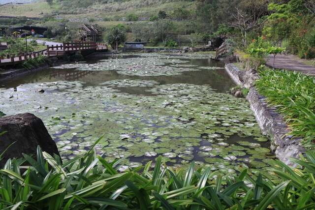 Lotus Pond Visitor Center in Hualien