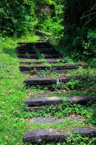 This is a mountain trail through the steps of